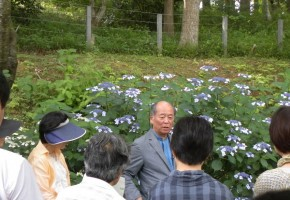 DIC川村記念美術館「日本の伝統色~庭園の色彩に触れながら~」