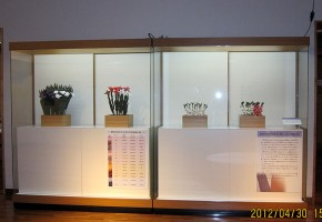 薬師寺の花会式 (修二会) 造り花
